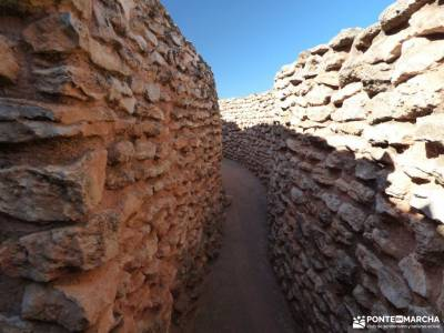 Motilla del Azuer-Corral de Almagro;hayedo de tejera negra peña ubiña la boca del asno navacerrada